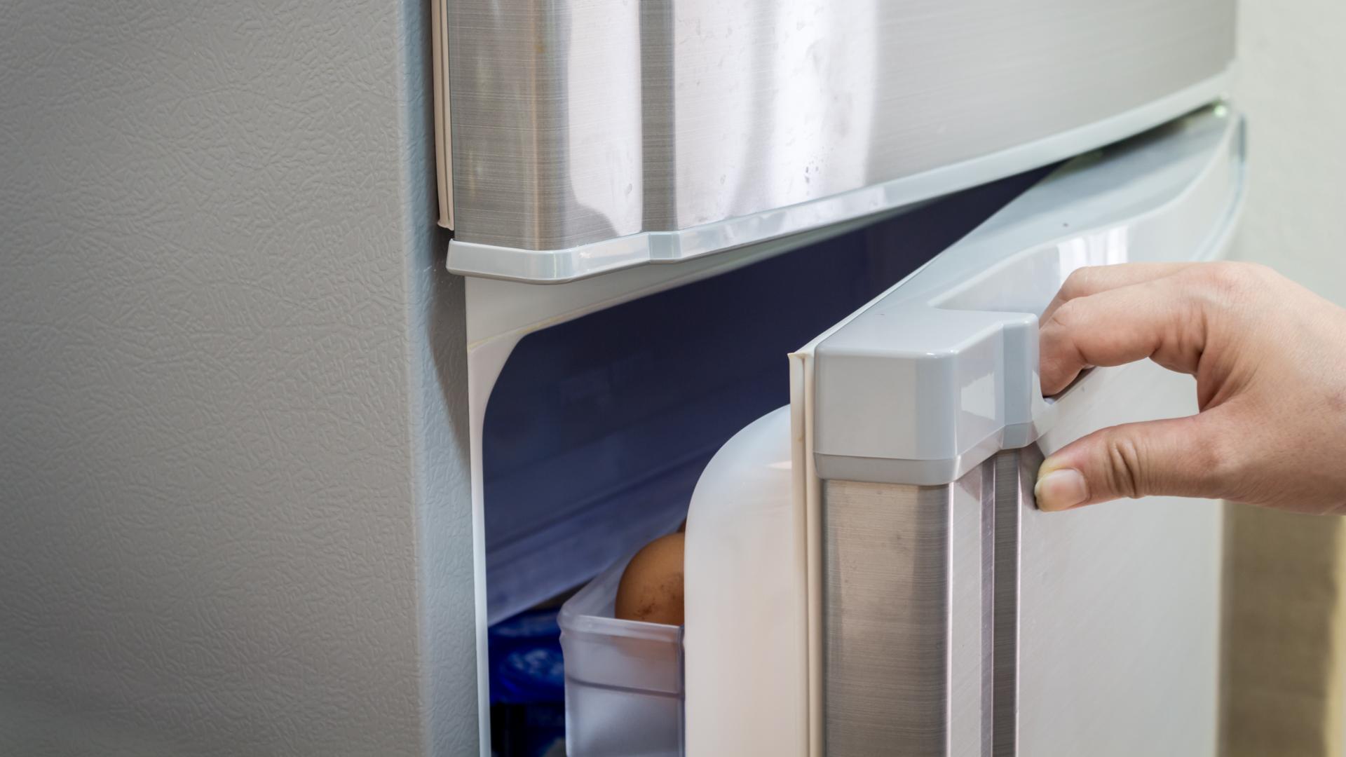 Qual a melhor geladeira Duplex? 10 refrigeradores para comprar em 2020