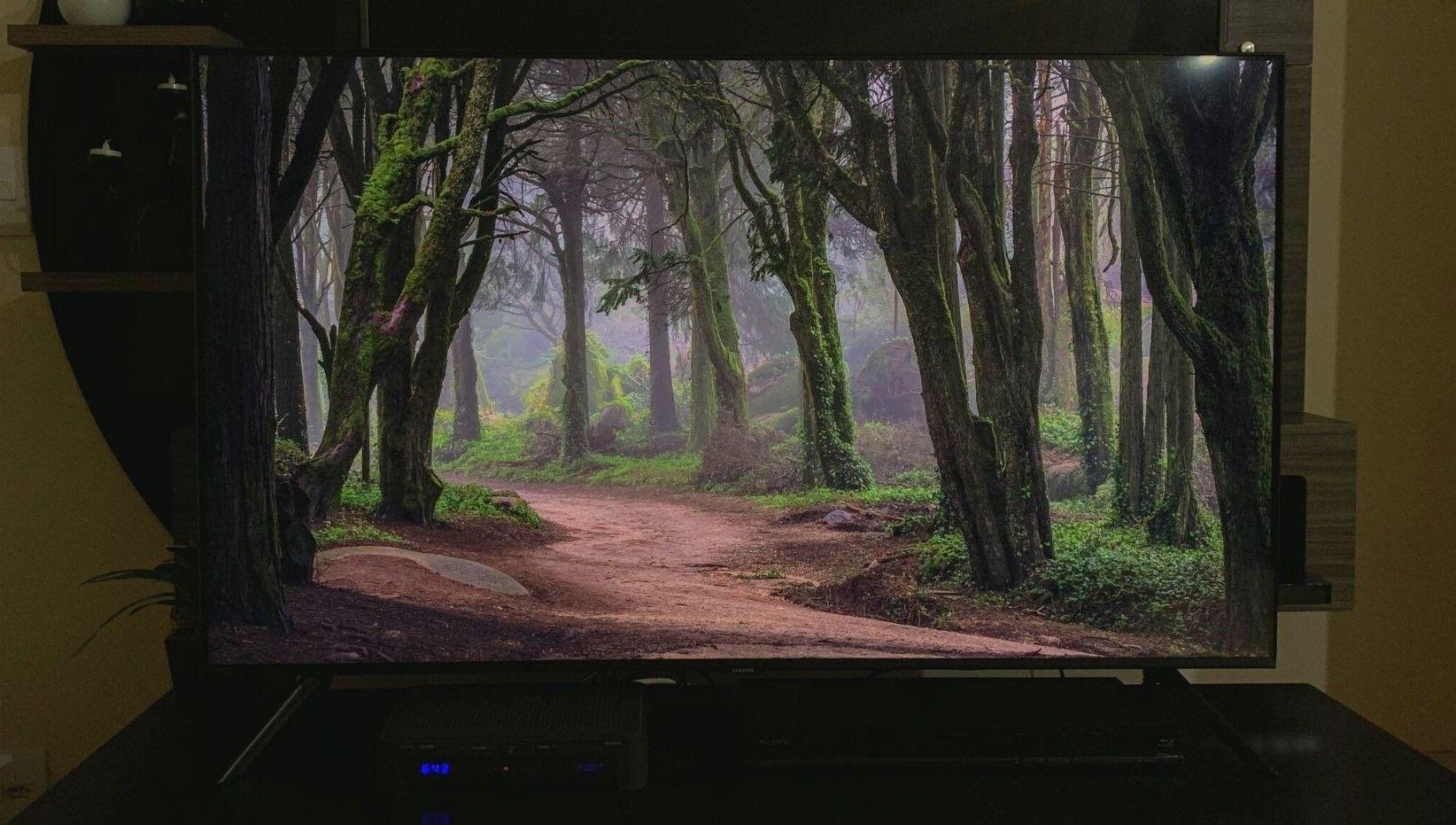 Modo Ambiente Foto está presente na TV Samsung TU8000. (Imagem: Yulli Dias/Zoom)