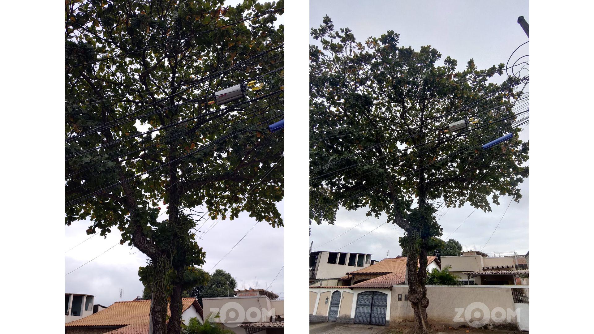 Foto com a câmera normal (à esquerda) e foto com a câmera ultrawide (à direita). (Foto: Murilo Tunholi/Zoom)