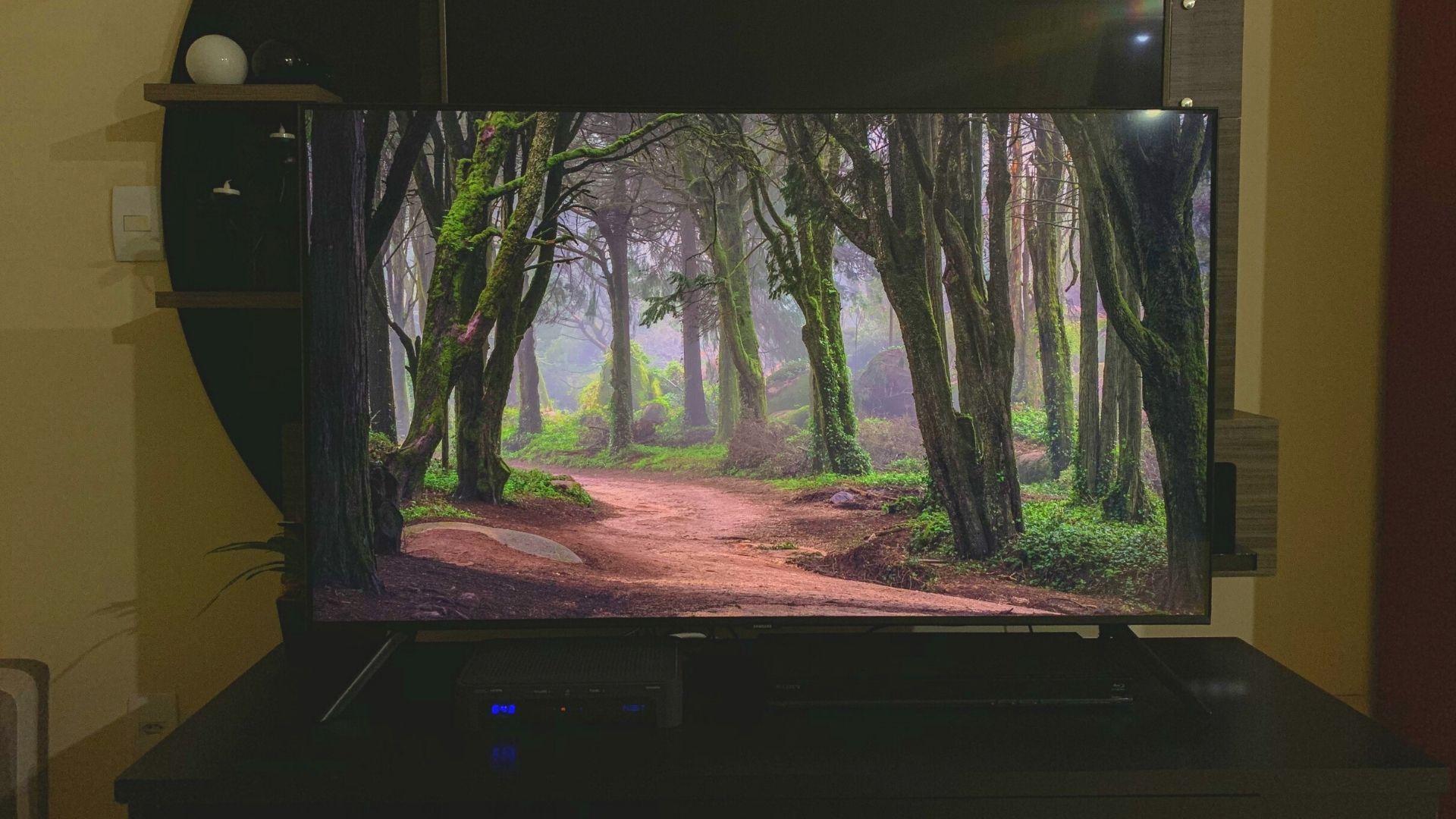 Samsung TU8000 vem com Modo Ambiente instalado. (Imagem: Yulli Dias/Zoom)