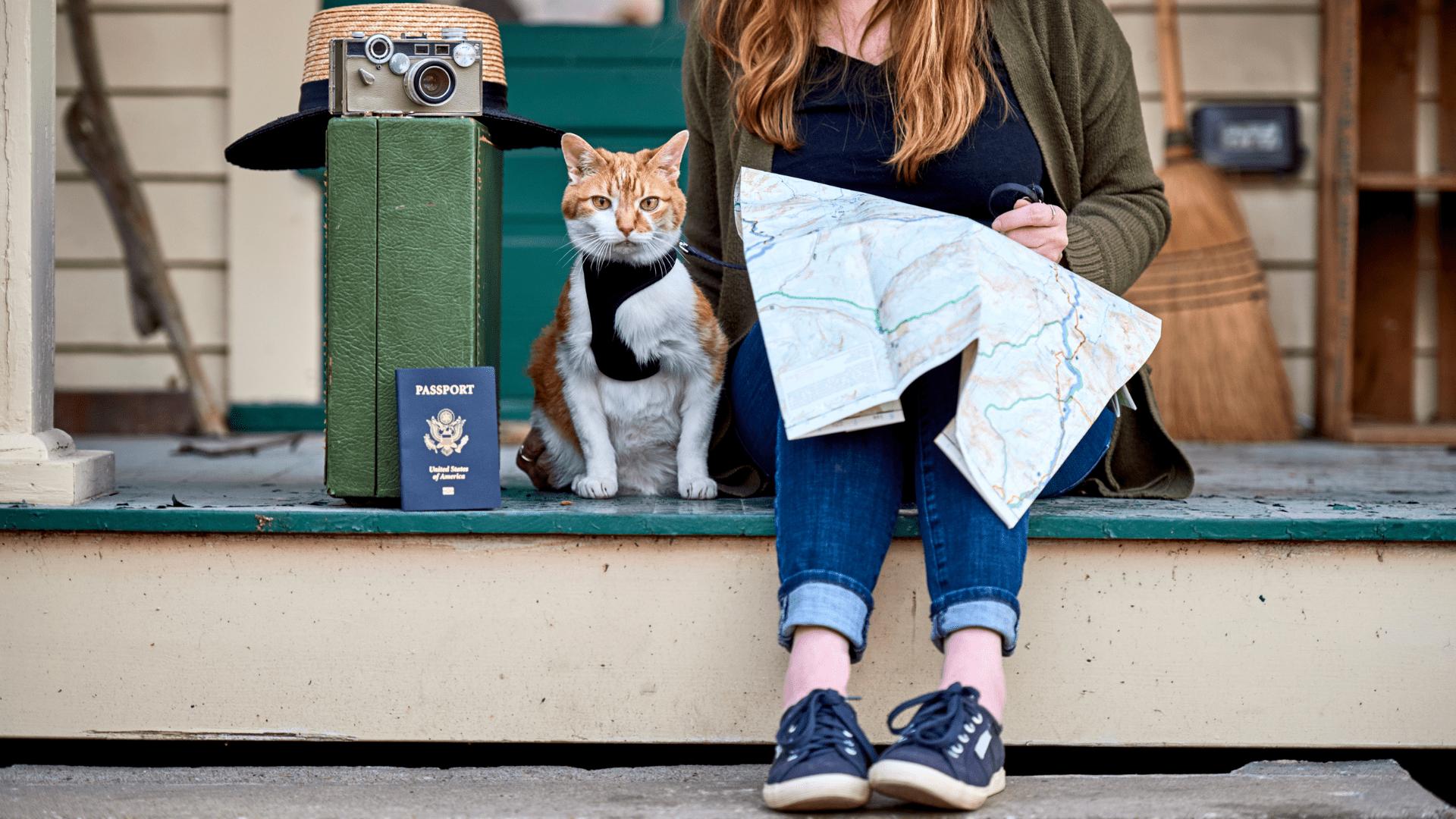 Não esqueça nenhum item para uma viagem ainda mais segura! (Reprodução/Shutterstock)