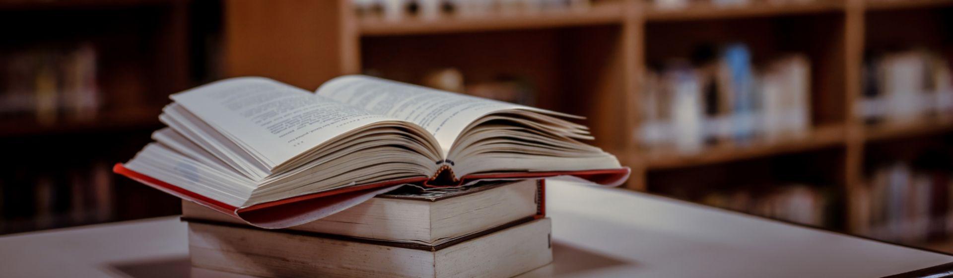 Livros de Leandro Karnal: conheça o autor em 8 títulos