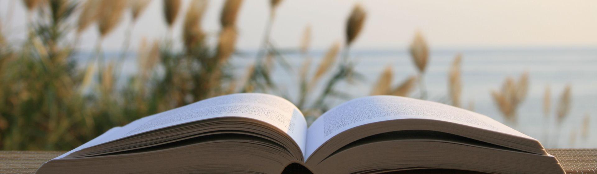 Os Melhores Livros Espíritas e Espiritualistas para ler em 2020