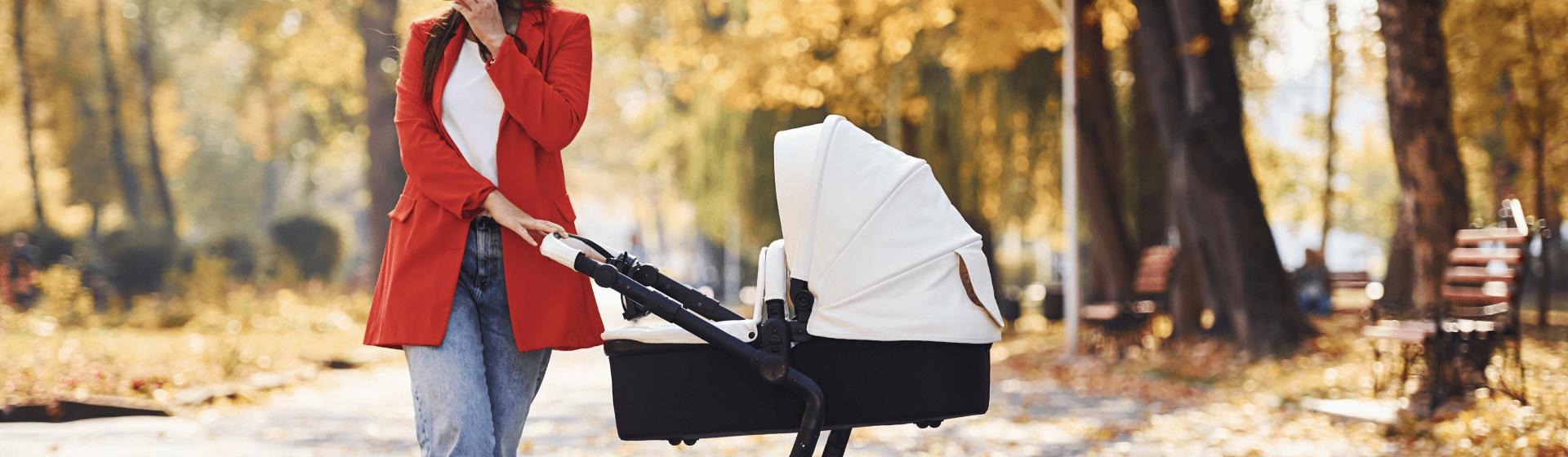 Carrinho de bebê: o que é o Moisés?
