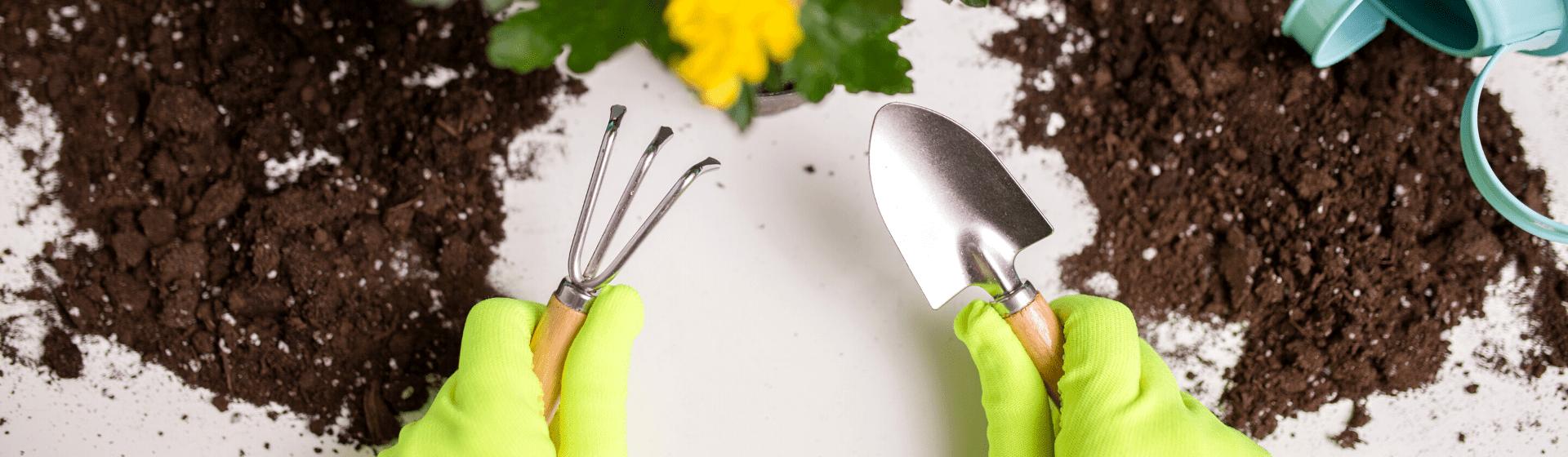 Ferramentas de jardinagem: como montar um kit de jardinagem?