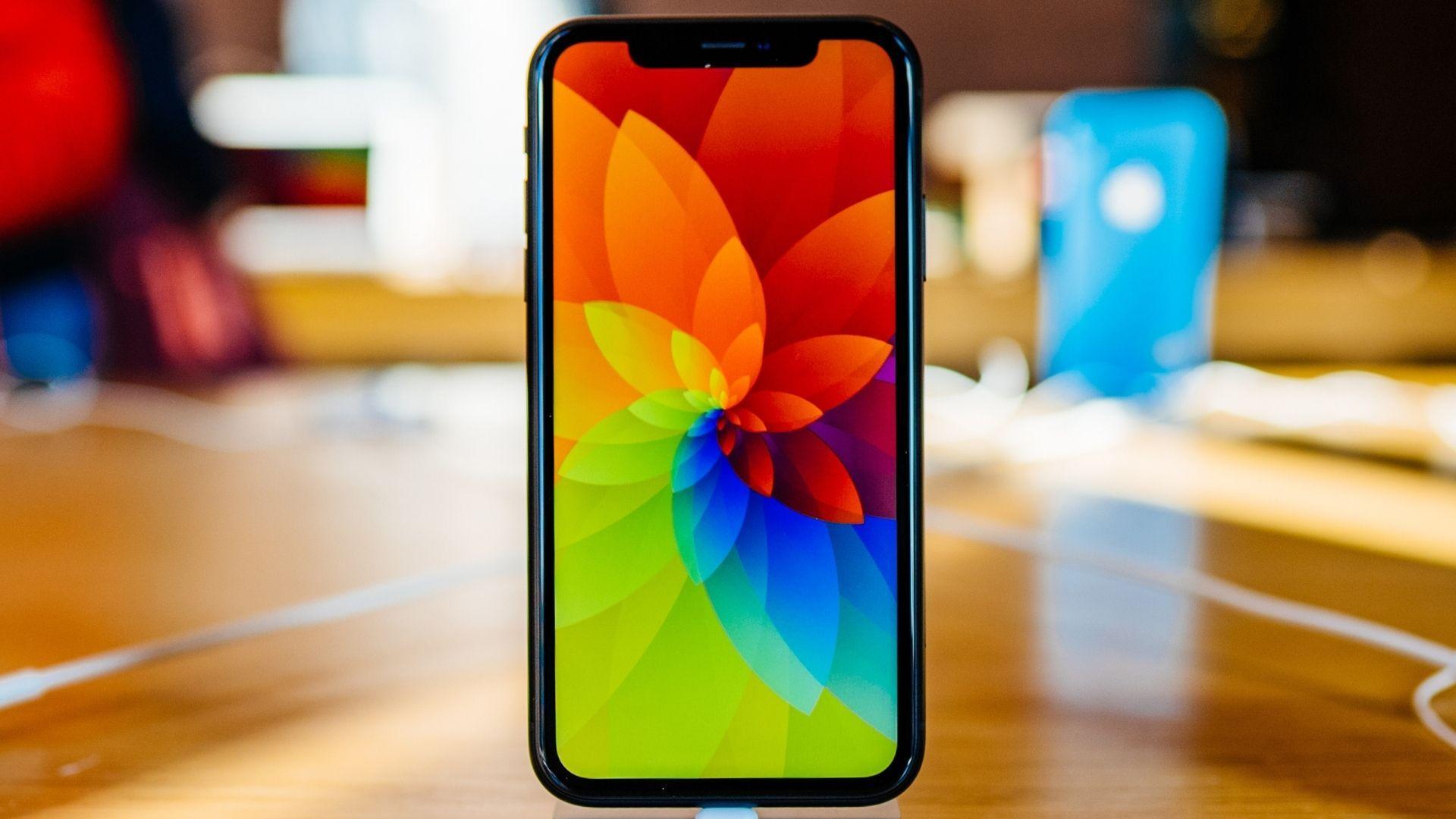 iPhone XR foi lançado em 2018, mas ainda faz sucesso (Foto: Hadrian / Shutterstock.com)