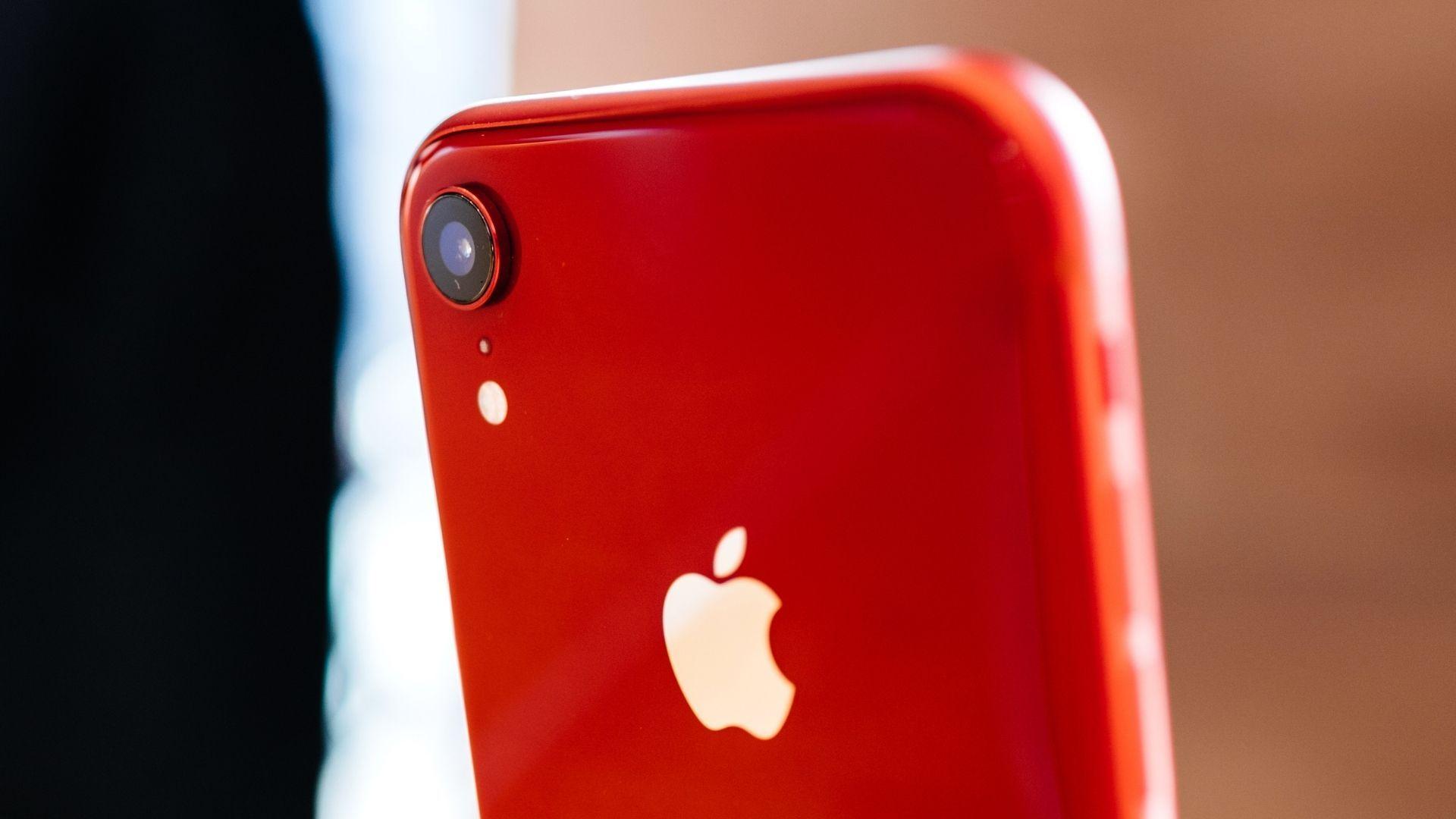 O iPhone XR só tem uma câmera, mas faz bonito na hora de tirar fotos (Foto: Hadrian / Shutterstock.com)