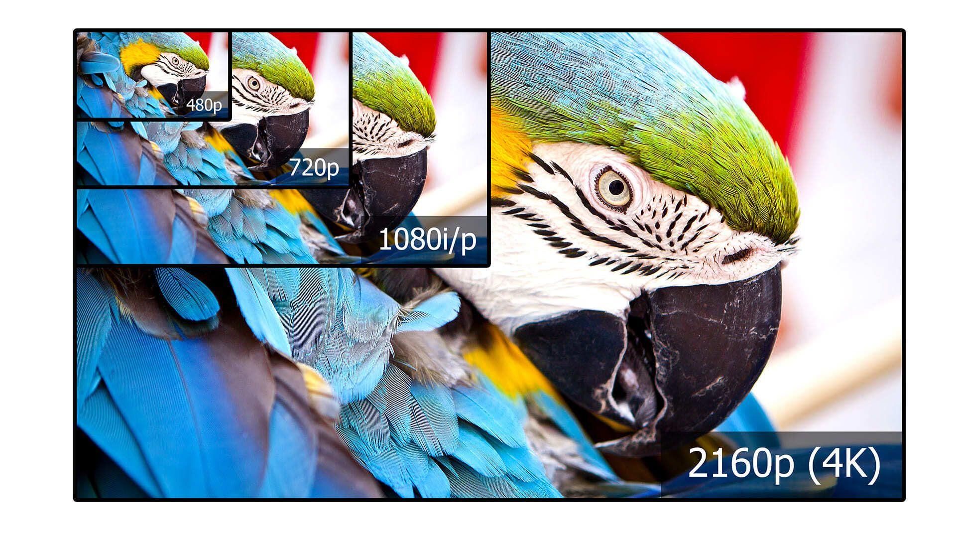 Conheça as melhores Smart TVs Samsung 4K e Full HD (Imagem: Shutterstock)
