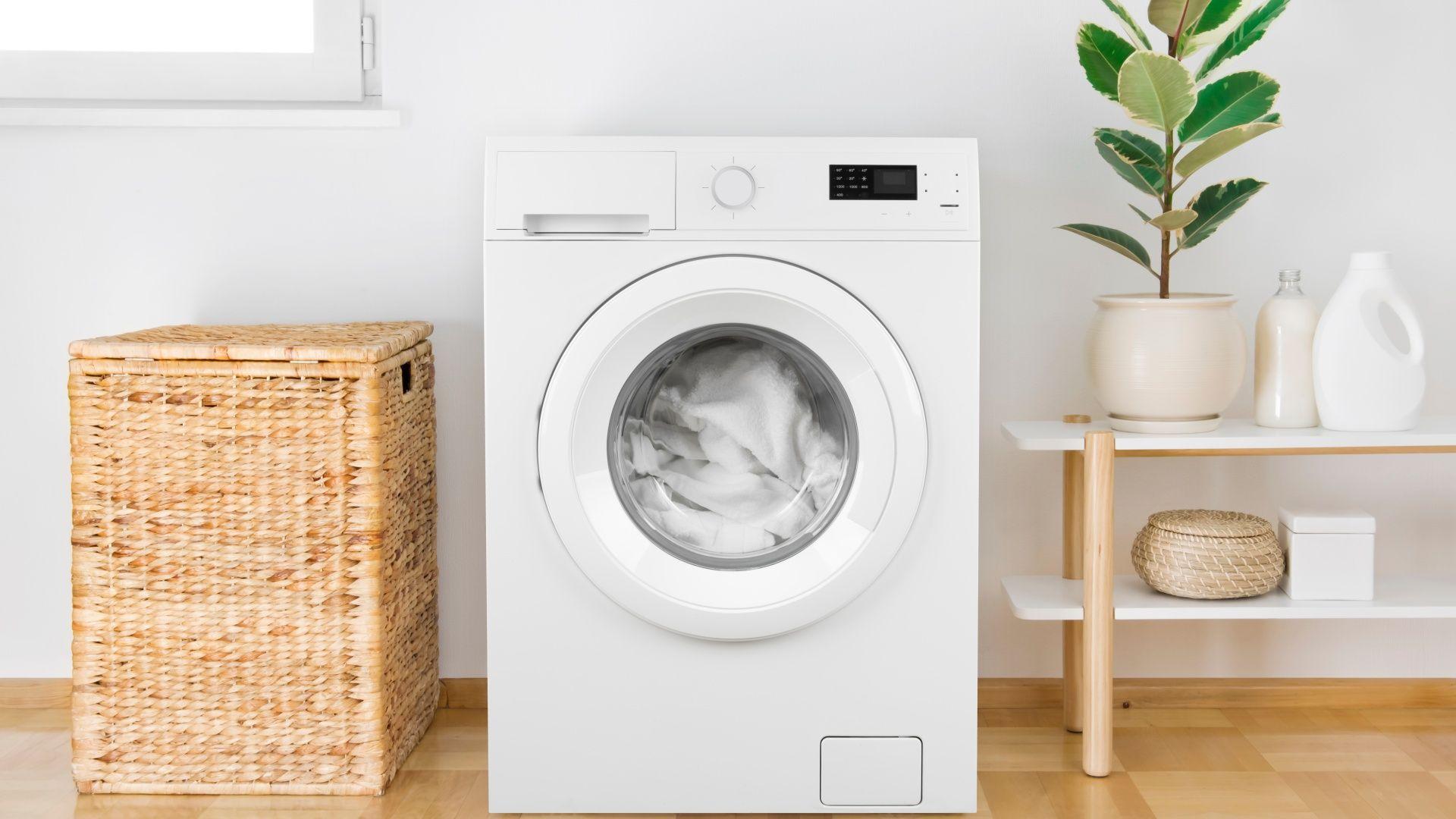 Separar as roupas por cores e tipos de tecido é o primeiro passo para aprender como lavar roupa (Foto: Shutterstock)