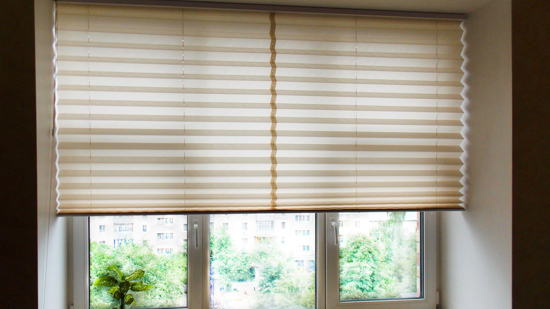 Usar a luz natural ajuda a economizar energia (Imagem: Reprodução/Shutterstock)