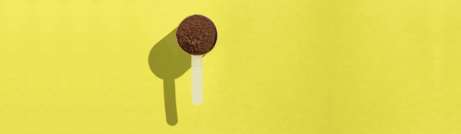 Melhor Whey Protein isolado de 2021: 7 opções para comprar