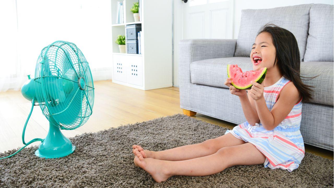 Confira a lista com os melhores ventiladores e circuladores de ar (Foto: Shutterstock)