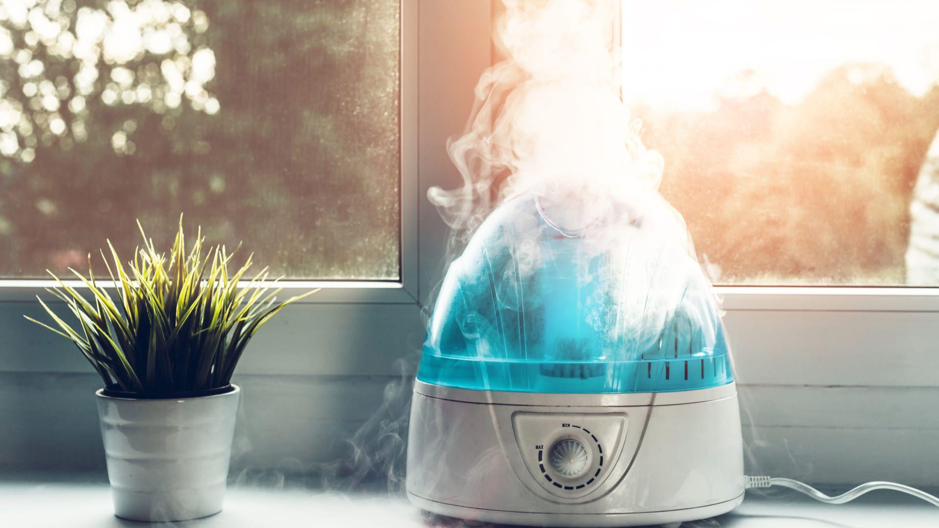 Os umidificadores à vapor são os mais comuns. (Imagem: Reprodução/Shutterstock)
