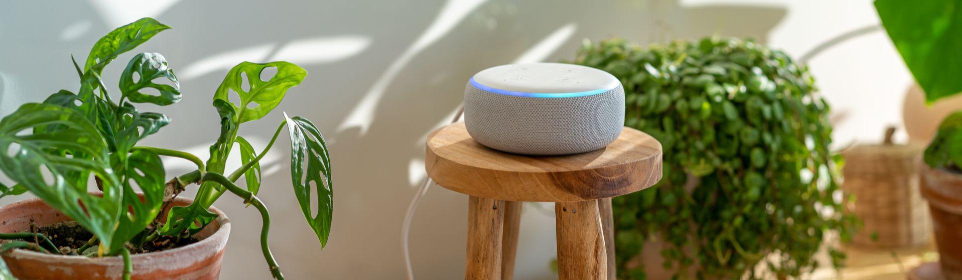 Melhores skills da Alexa: 7 funções da assistente virtual