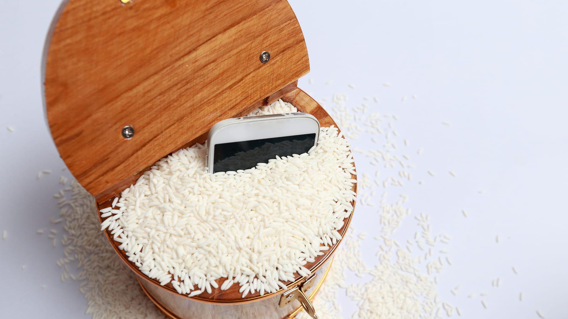 Como tirar água do celular? O arroz é aliado (Foto: Shutterstock)