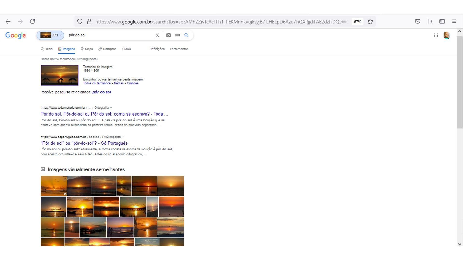 O Google mostra todas as fotos semelhantes para a sua pesquisa (Fonte: Reprodução)