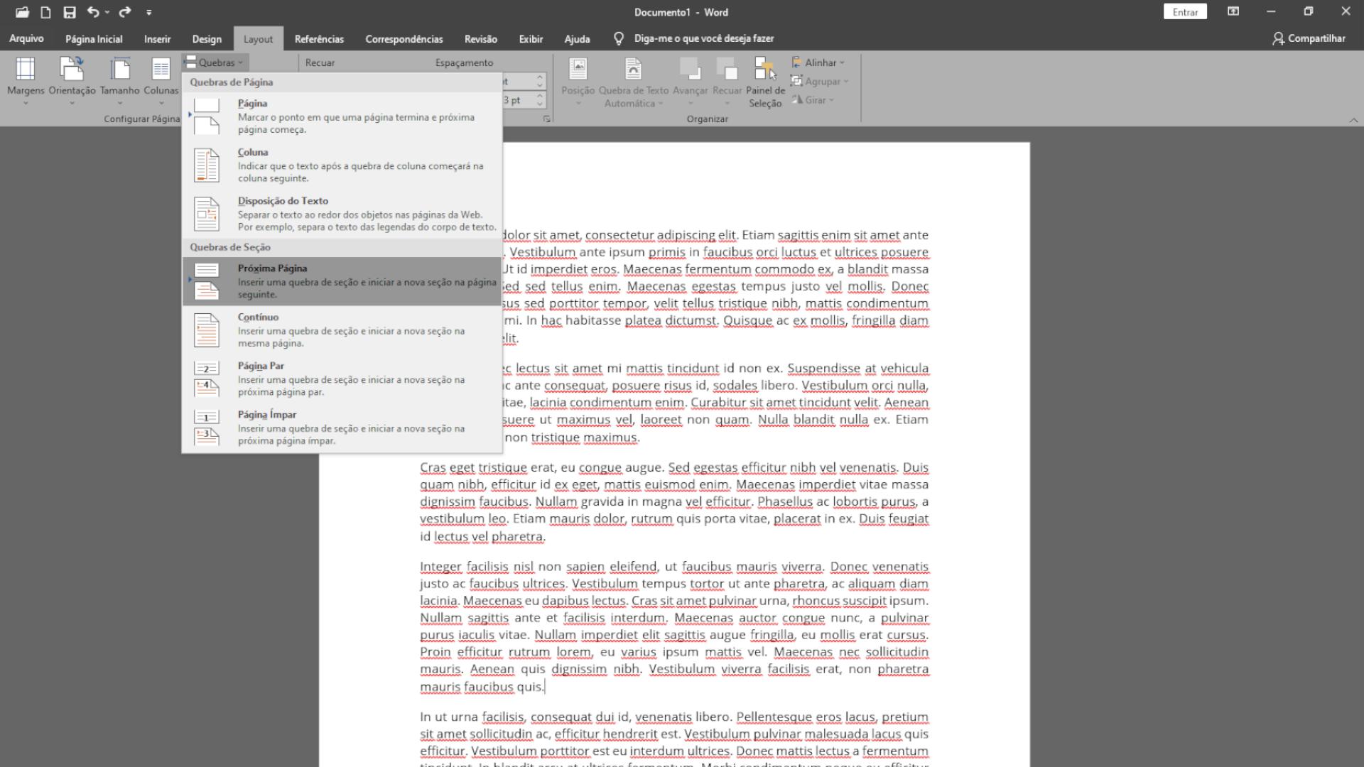 Quebrar a página separa o documento para numerar páginas do Word no ponto que quiser (Foto: Reprodução/Zoom)