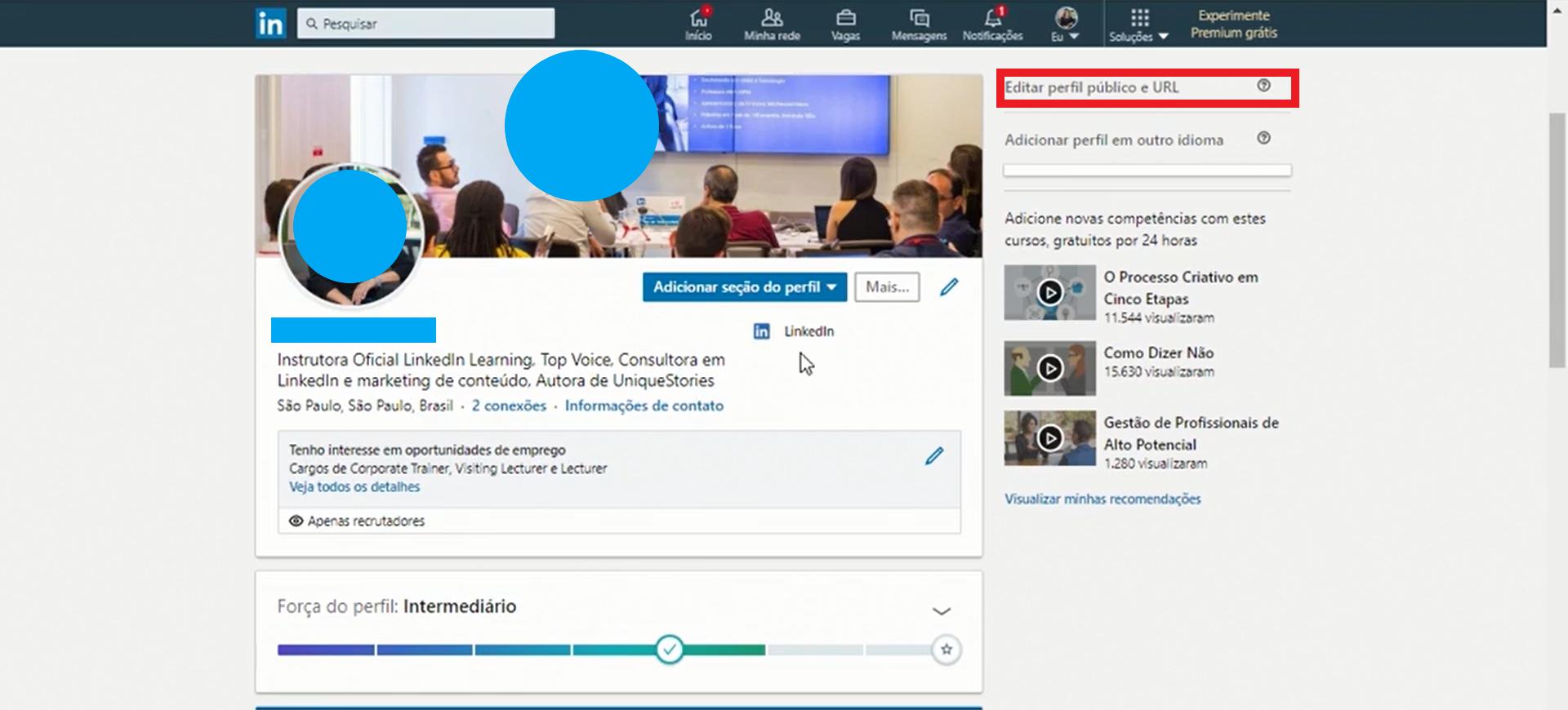 Configurar seu perfil público no LinkedIn é importante para que pessoas fora da rede tenham acesso às suas informações (Foto: Reprodução)