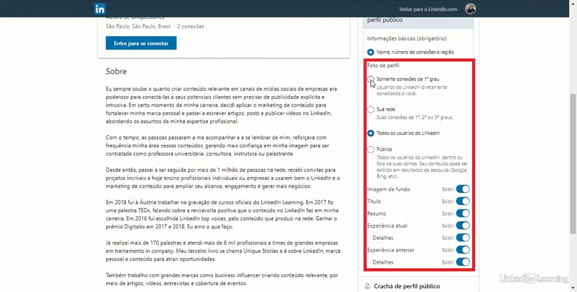 Escolha que informações ficarão visíveis no seu perfil público do LinkedIn (Foto: Reprodução)