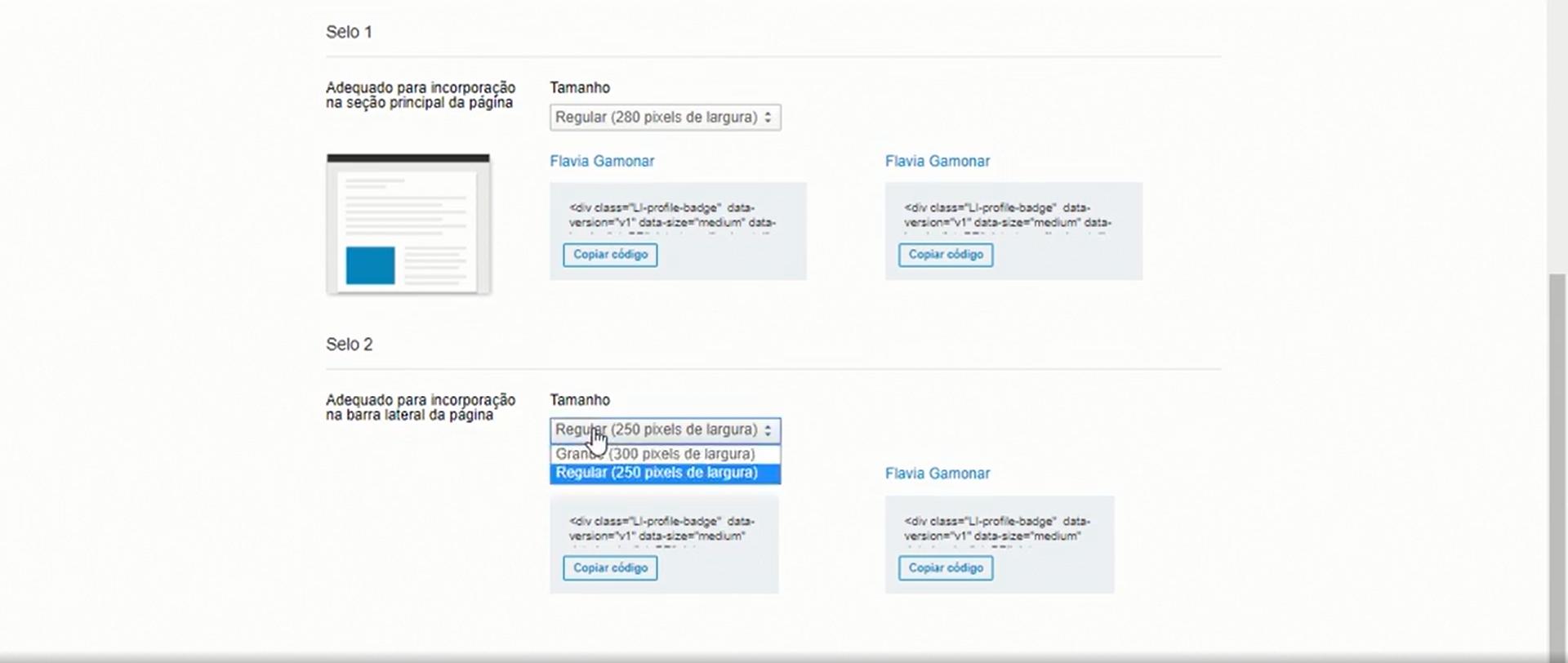 É possível escolher características do seu crachá de perfil público do LinkedIn (Foto: Reprodução)