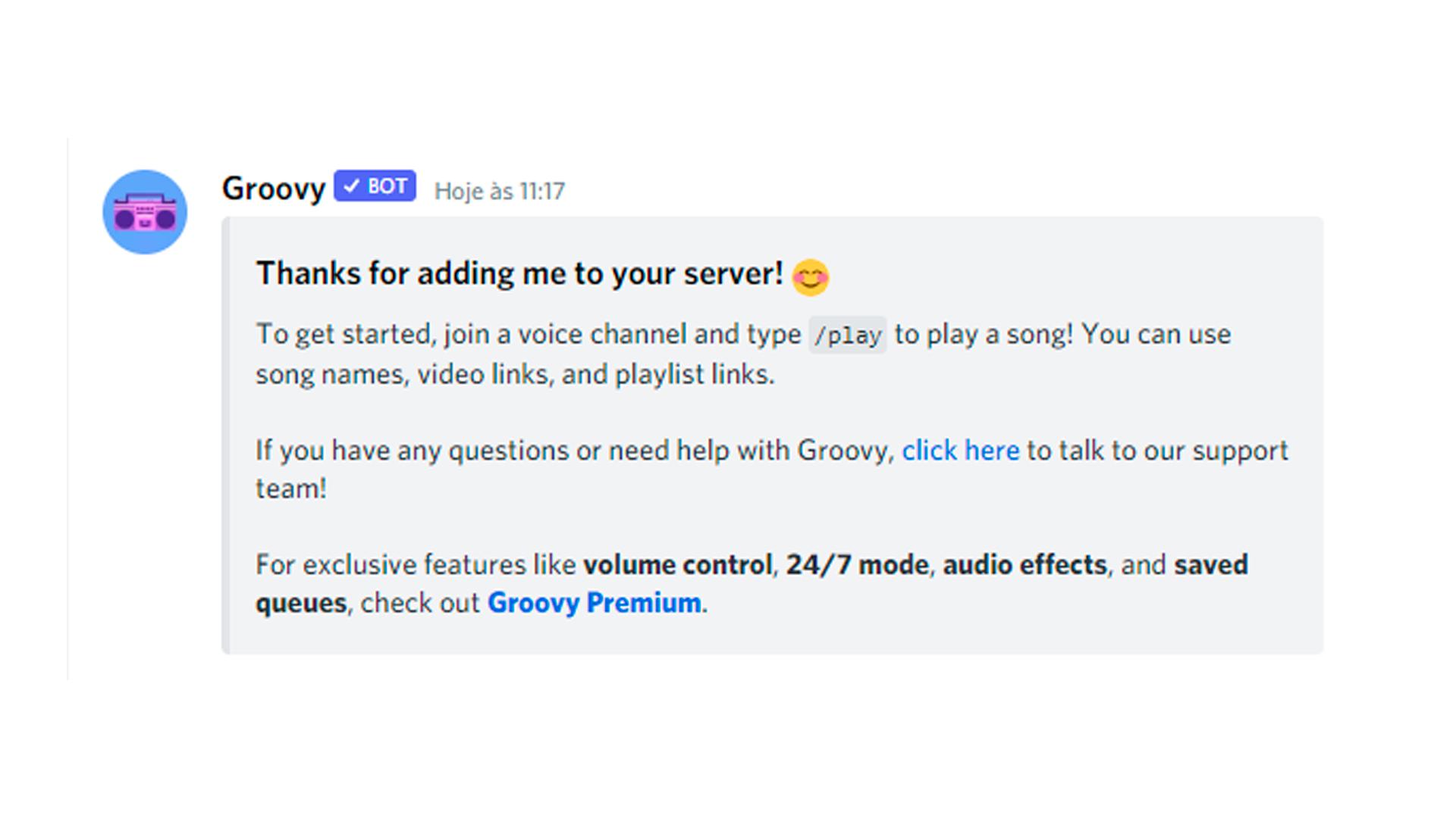 Se essa mensagem aparecer, o Groovy bot está pronto para uso (Foto/Hugo Iwaasa)