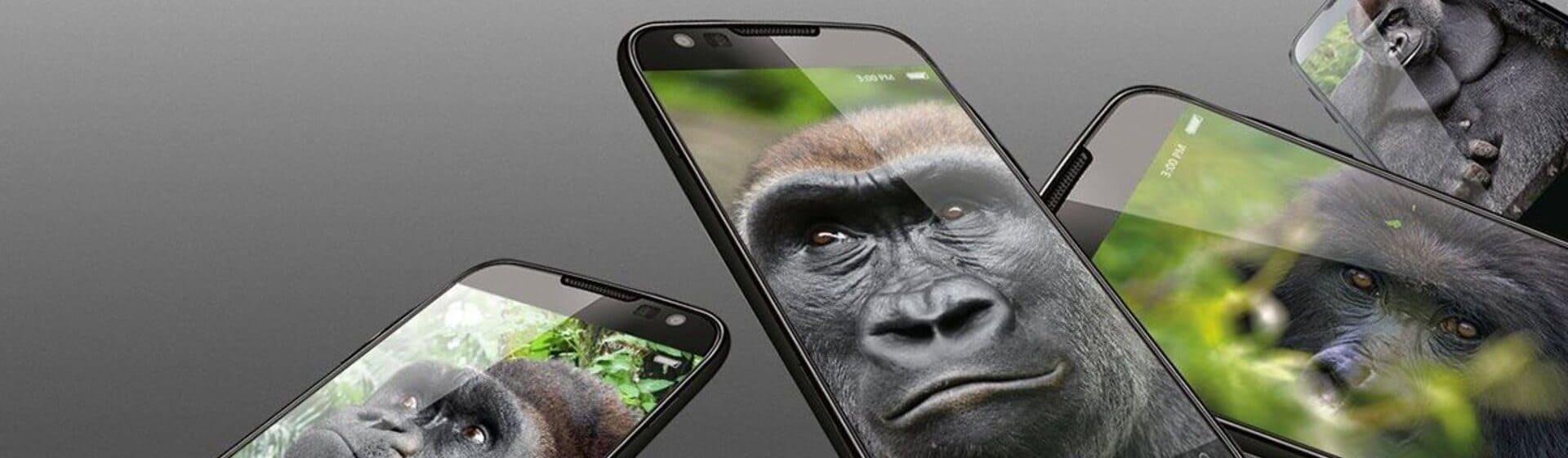 Na foto, celulares mostram fotos de gorilas