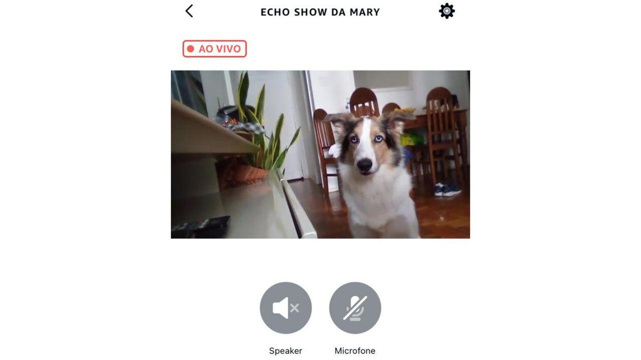 Print do celular aberto no monitoramento da câmera do Echo Show 5 em tempo real.