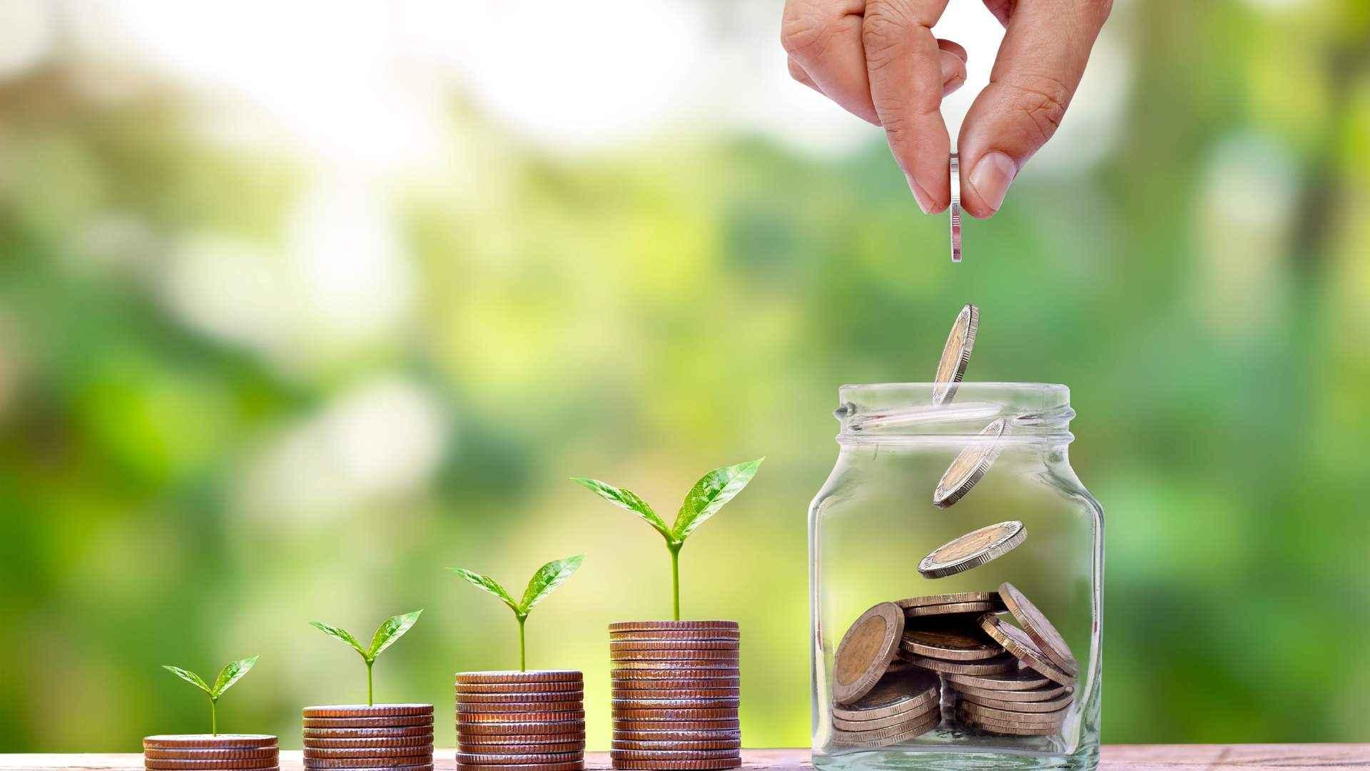 Pessoa jogando moedas em um jarro, com várias pilhas de moeda ao lado com planta brotando delas