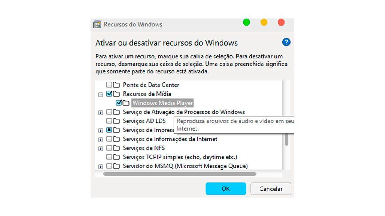 Print de uma janela com várias opções e a caixa de seleção do Windows Media Player.