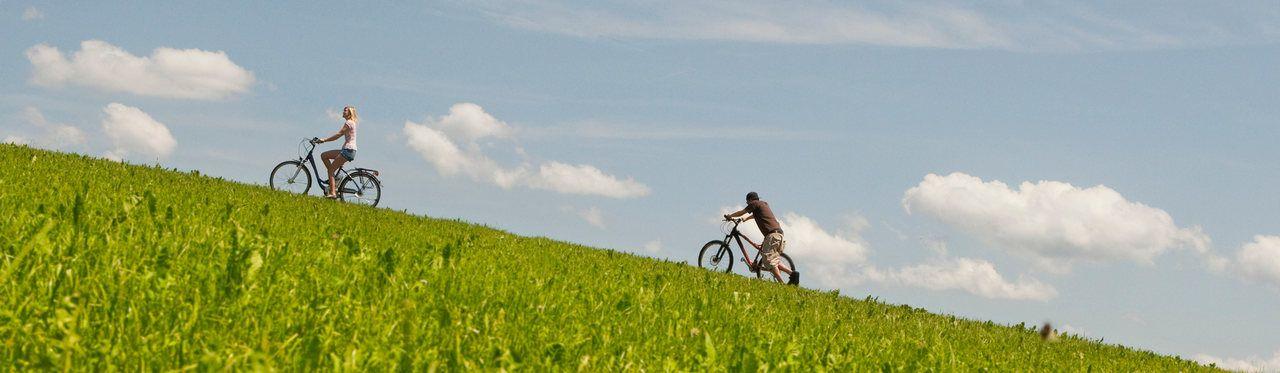 Melhor bicicleta motorizada: confira as opções que mais valem a pena no momento